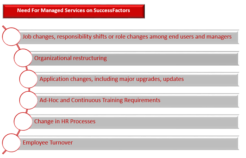 SF-Services-Image1